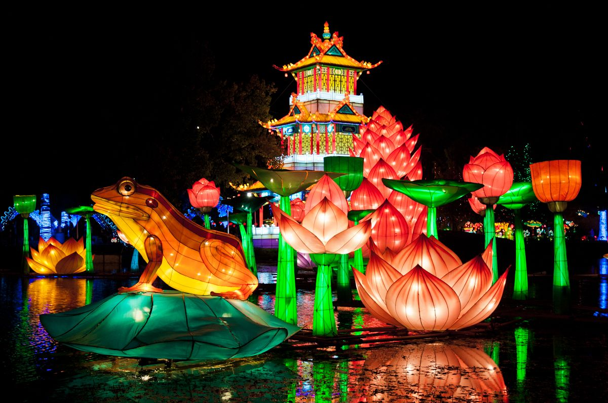 Chinese Lantern Festival Dallas, Texas Chinese lantern