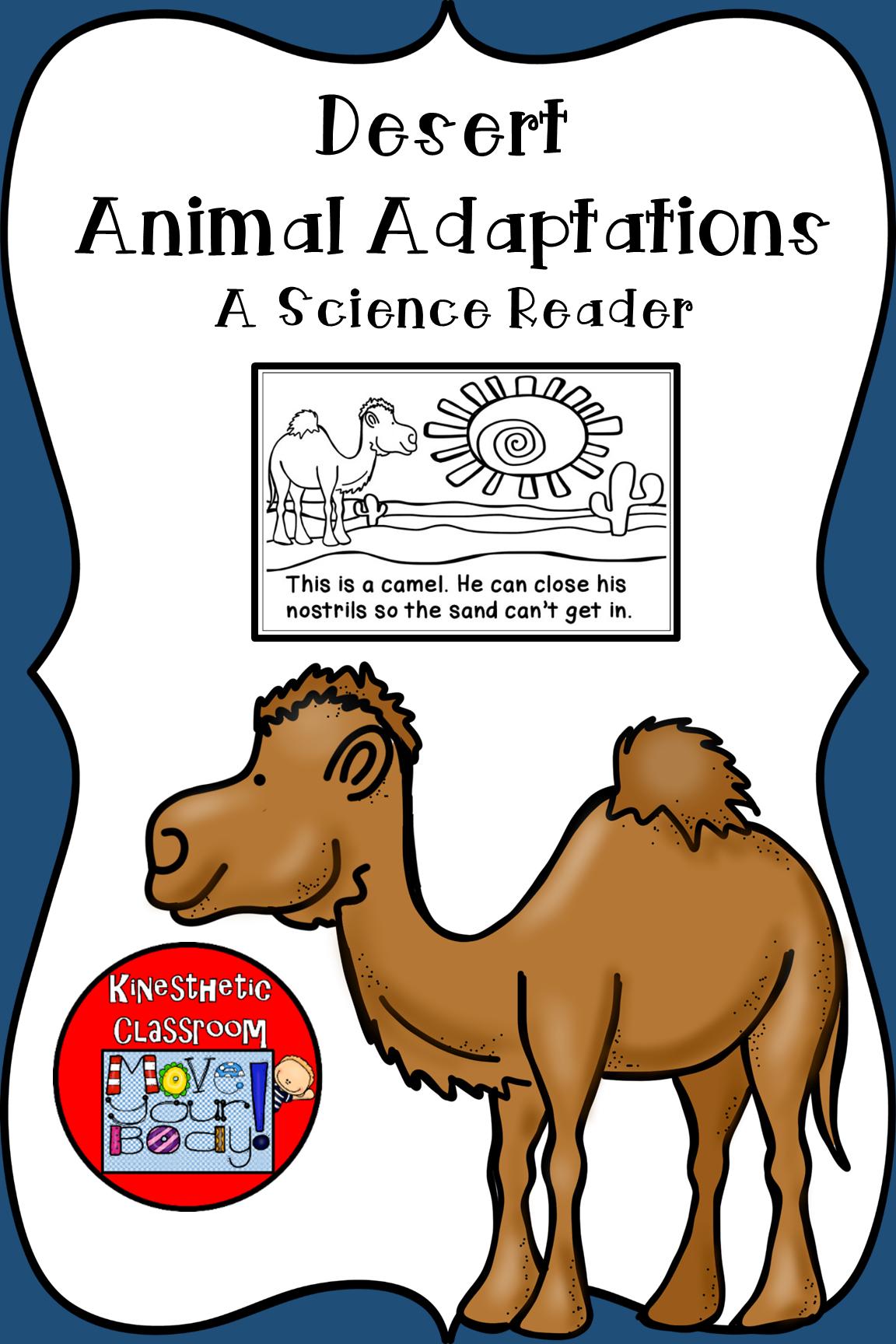 Desert Animal Adaptations Science Reader Animal