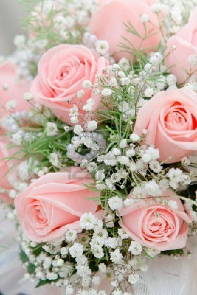 Choosing the best pink flowers for your lovely garden light pink pink flowers must be some of the most popular on planet we have rounded up mightylinksfo