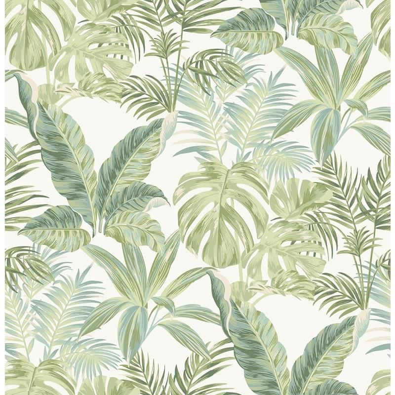 Nu3382 Madagascar Botanical Peel And Stick Wallpaper Wallpaper Roll Wallpaper Peel And Stick Wallpaper