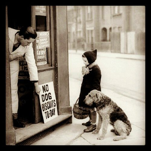 No dog biscuits today :( | Flickr - Photo Sharing!