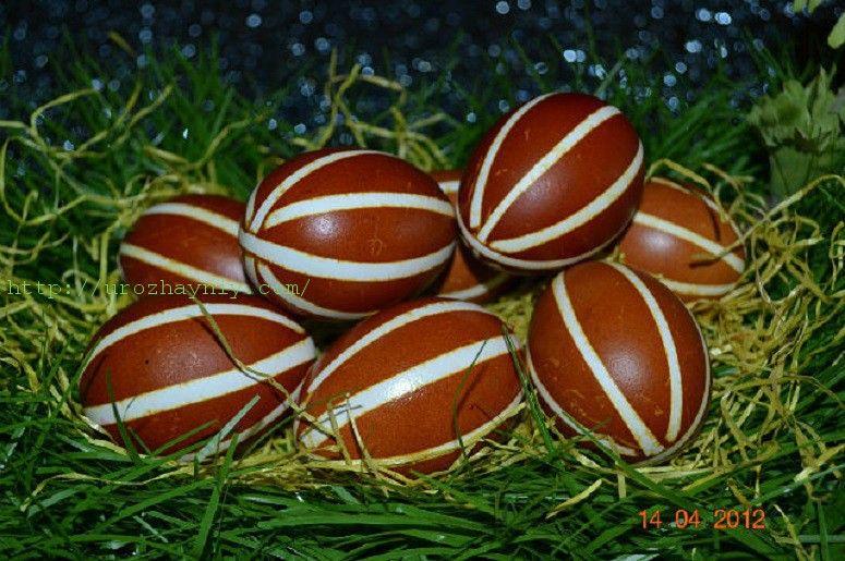 Как красить яйца на Пасху от Алены Дреер. | Окраска яиц ...