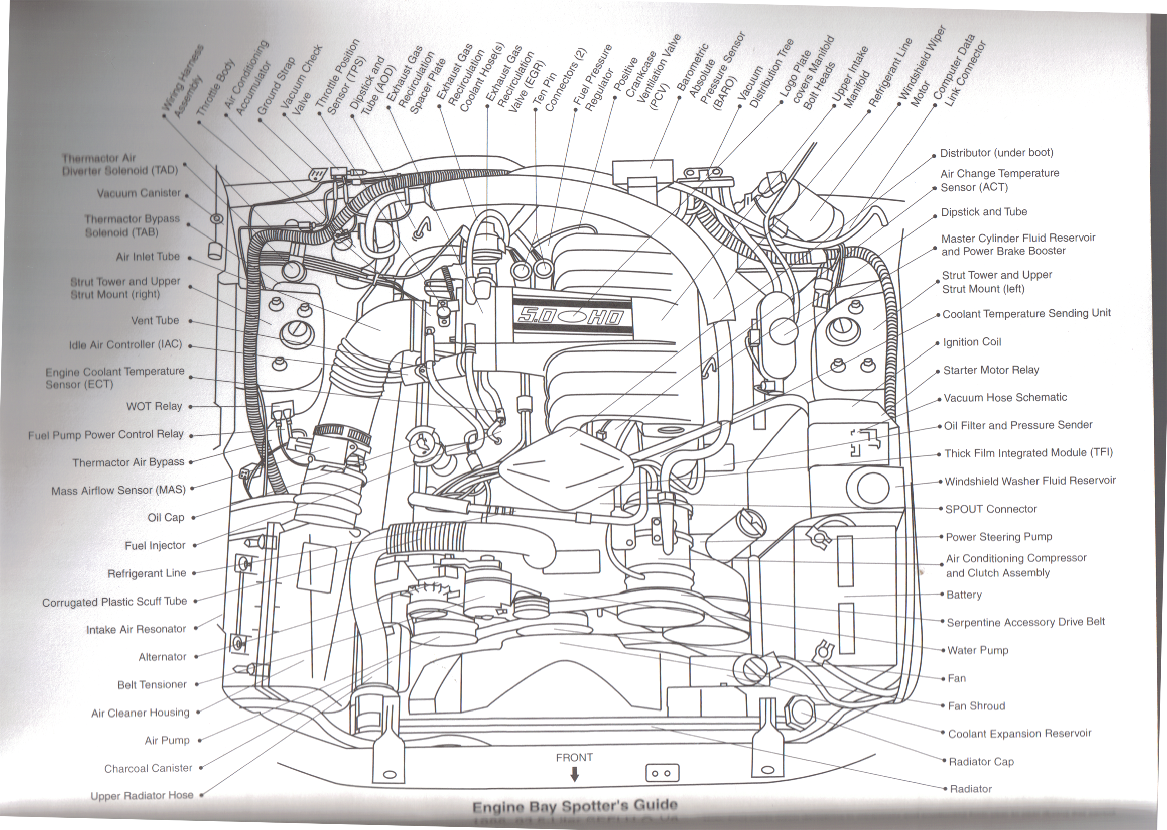Everything You Need To Know About 1979 1993 Foxbody Mustangs Americanmuscle Mustang Diagram Mustang Engine