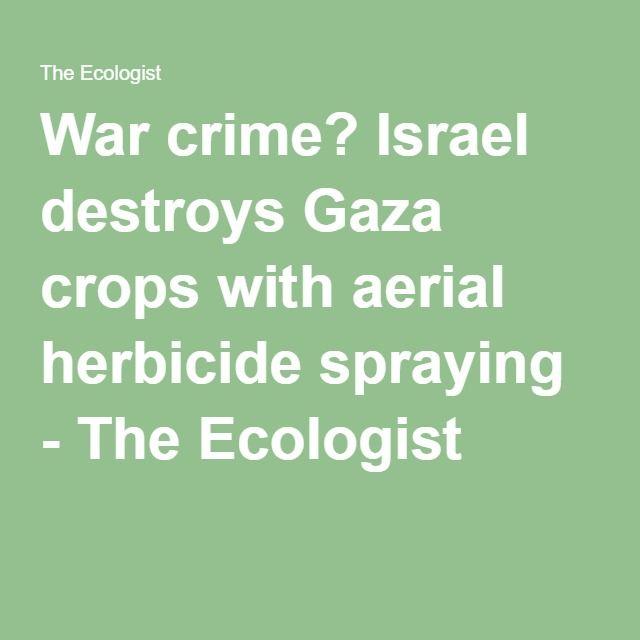 War crime? Israel destroys Gaza crops with aerial herbicide spraying - The Ecologist
