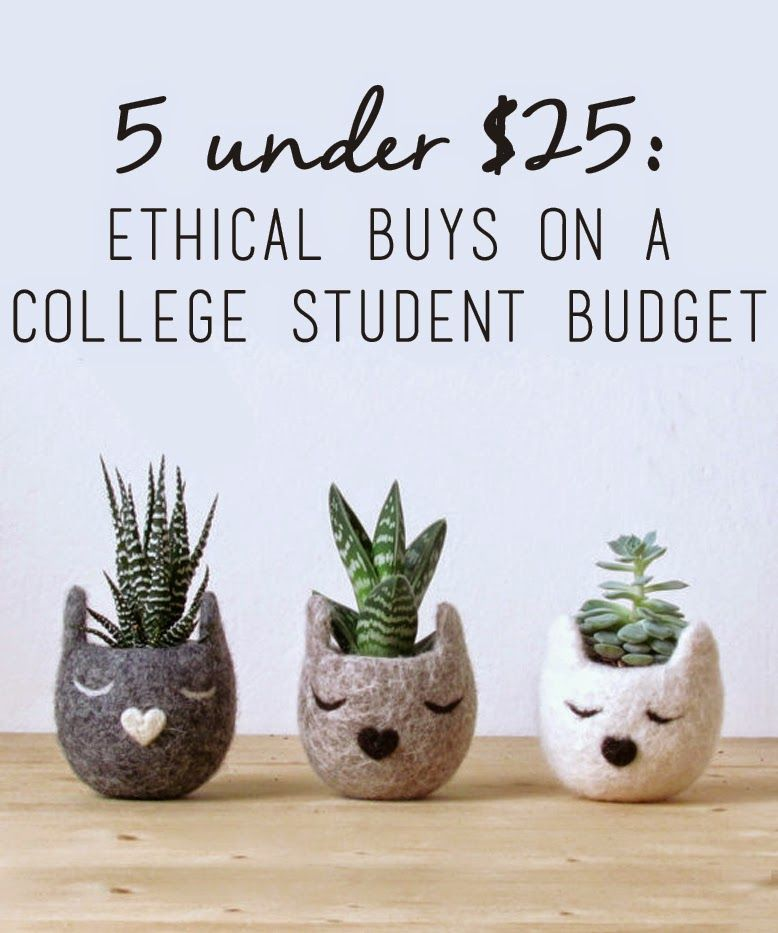 Under  Ethical Buys On A College Student Budget  Ethical