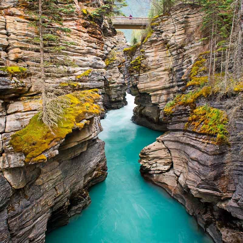 Amazing Places Canada: Jasper National Park, Jasper