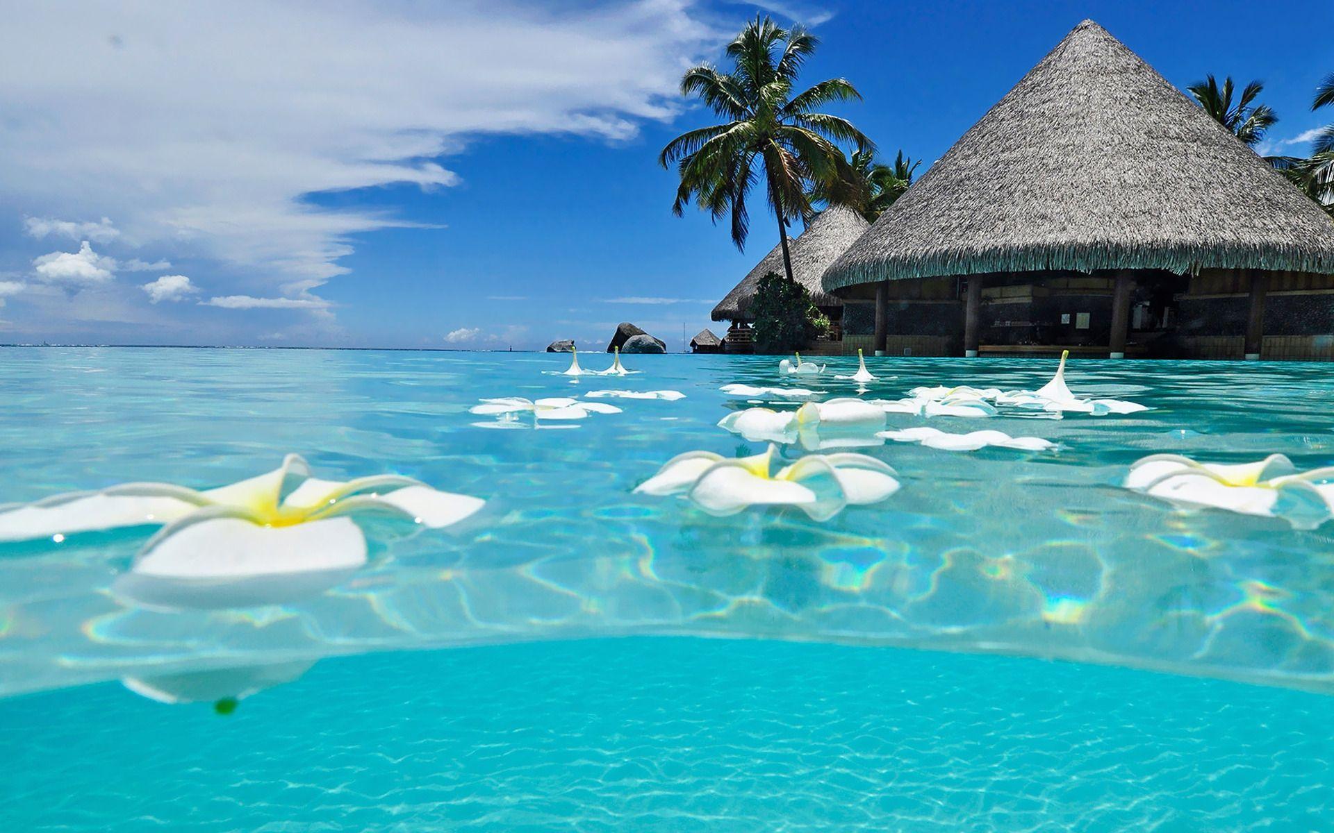 Pin By Kryz Lopez On Relaxation Cancun Beaches Beautiful Beaches Beach Wallpaper