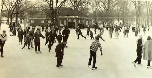 Ballenger Park 1958 I Remember Skating There When I Was Young Flint Michigan Pure Michigan Detroit Michigan
