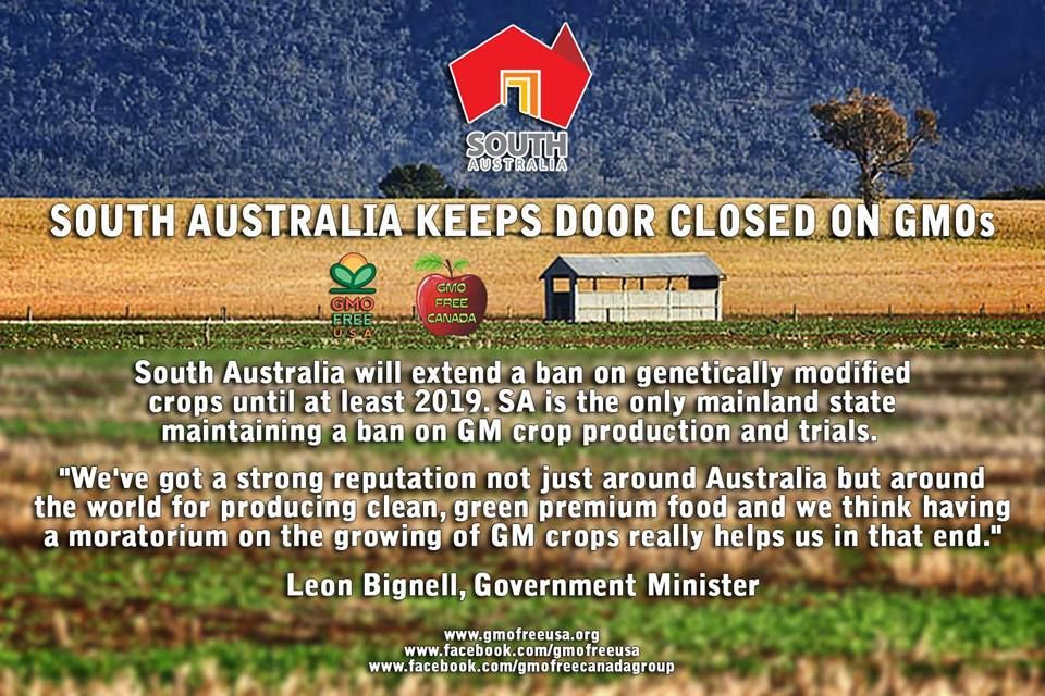 SOUTH AUSTRALIA KEEPING THE GMOs OUT! modified