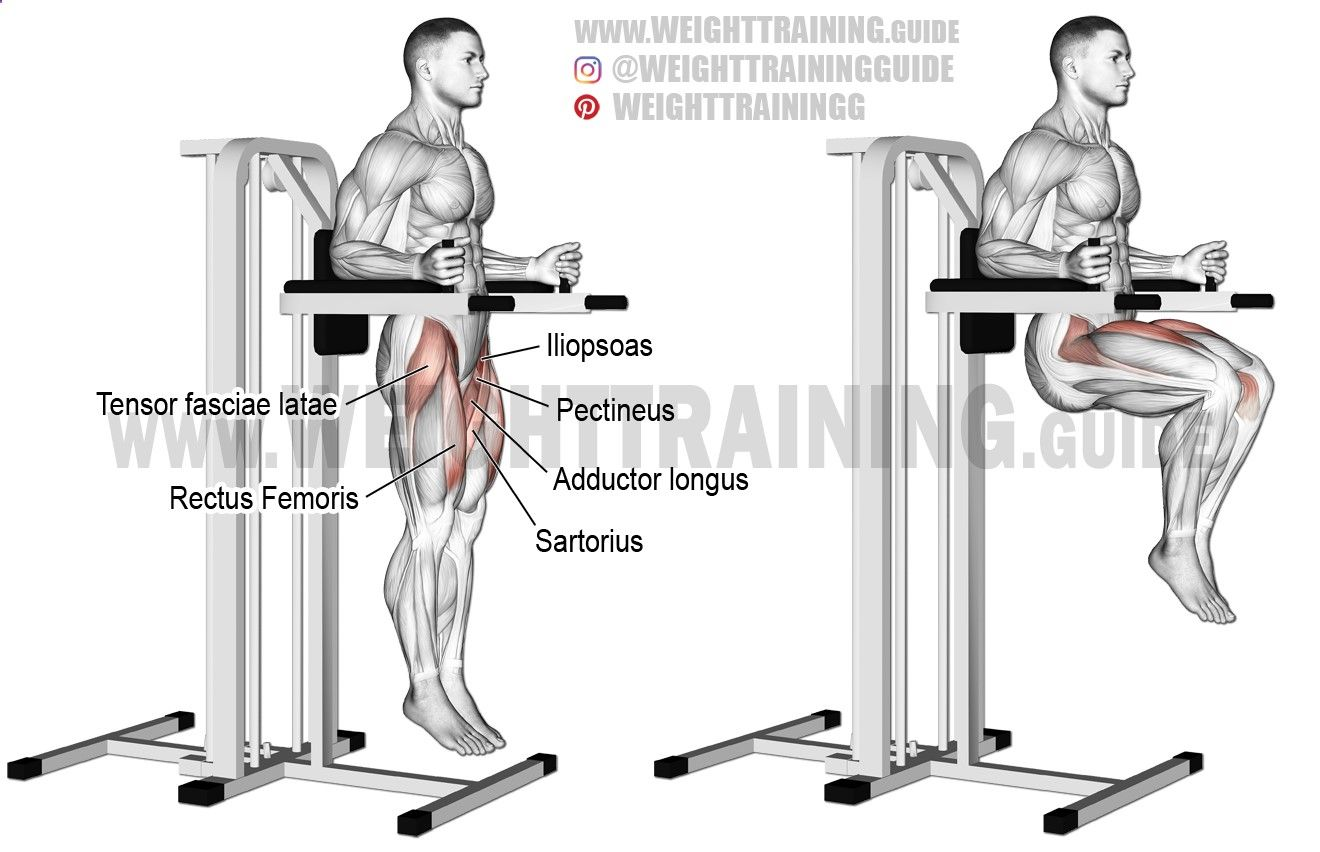 Captains Chair Leg Raise Aka Vertical Bench Leg Raise An Isolation Exercise Target Muscles Iliopsoas Synergist Leg Raise Exercise Chair Legs Fun Workouts