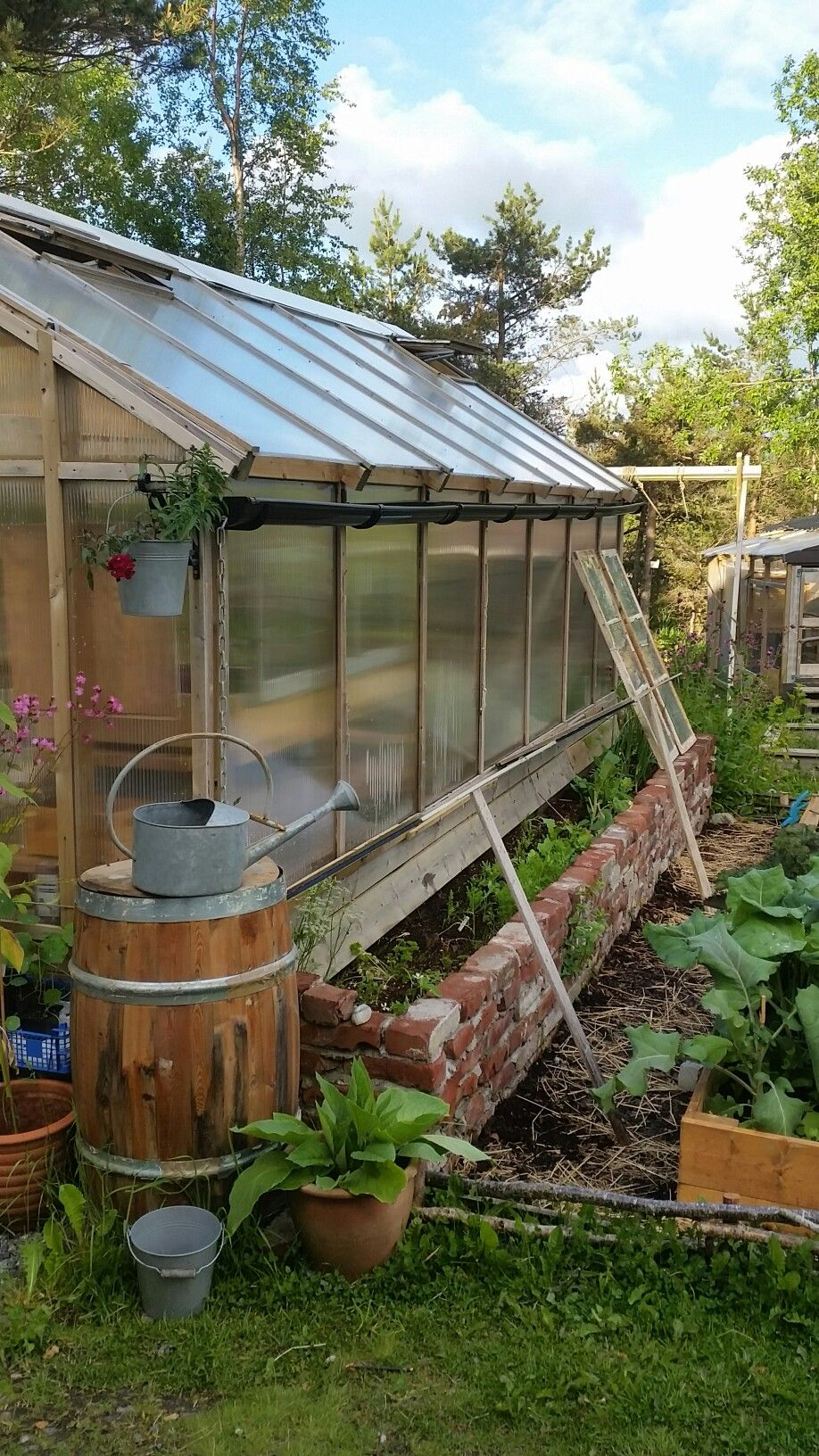 Greenhouse and vegetable patch, cottage garden style. | Garden ...