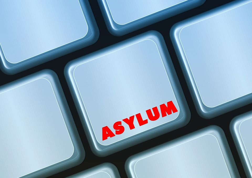 Asylum, Politically, Keyboard, Online, Policy, Germany