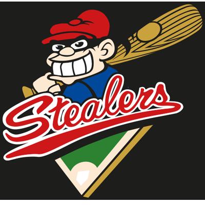 Pin By Mark Edghill On Teamlogotuesday Sports Badge Sports Logo Softball Team
