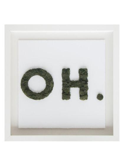 Oliver Gal Oh Moss (Framed)