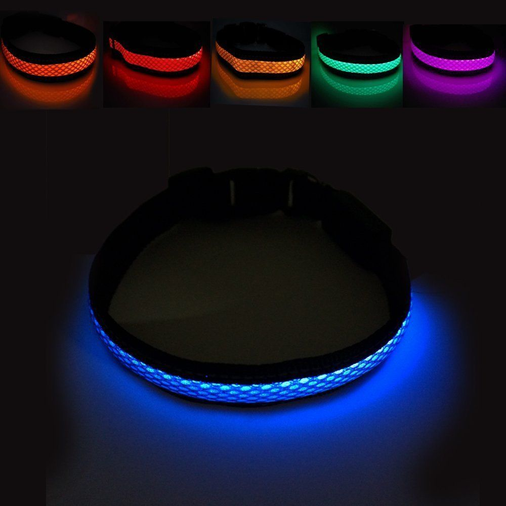 bawwo glow light img luminous night up flashing lk collar led product dog
