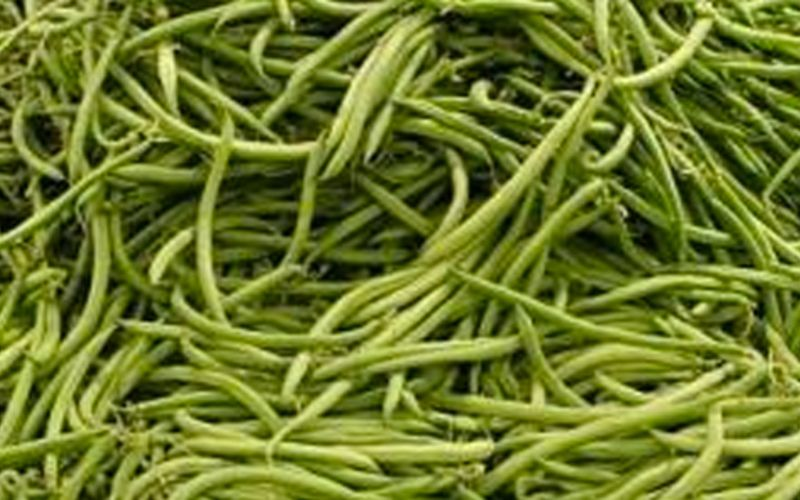 Haricots verts au micro ondes cuisine tudiant cuisine - Cuisiner haricots verts surgeles ...