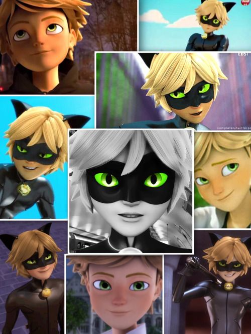Chat Noir Adrien Collage Chat Noir Adrien Agreste