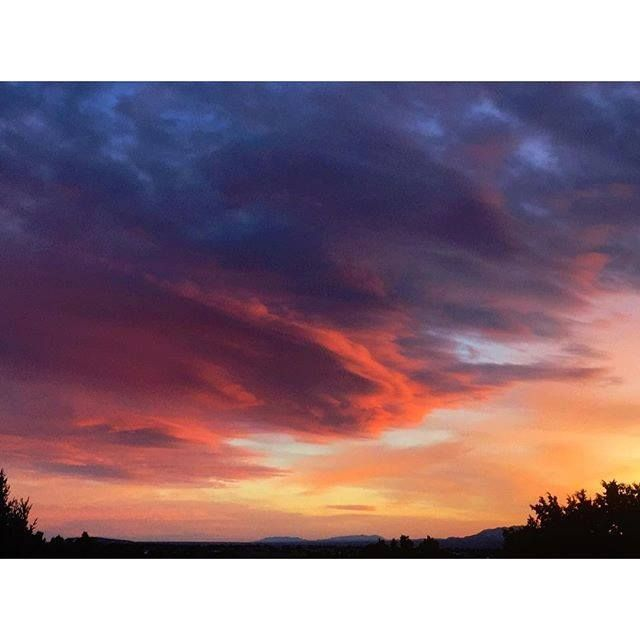 New Mexico has the dopest clouds I've ever seen ☁ Nuevo México tiene las nubes más chidas que he visto jamás.Photo by Geninne's Art