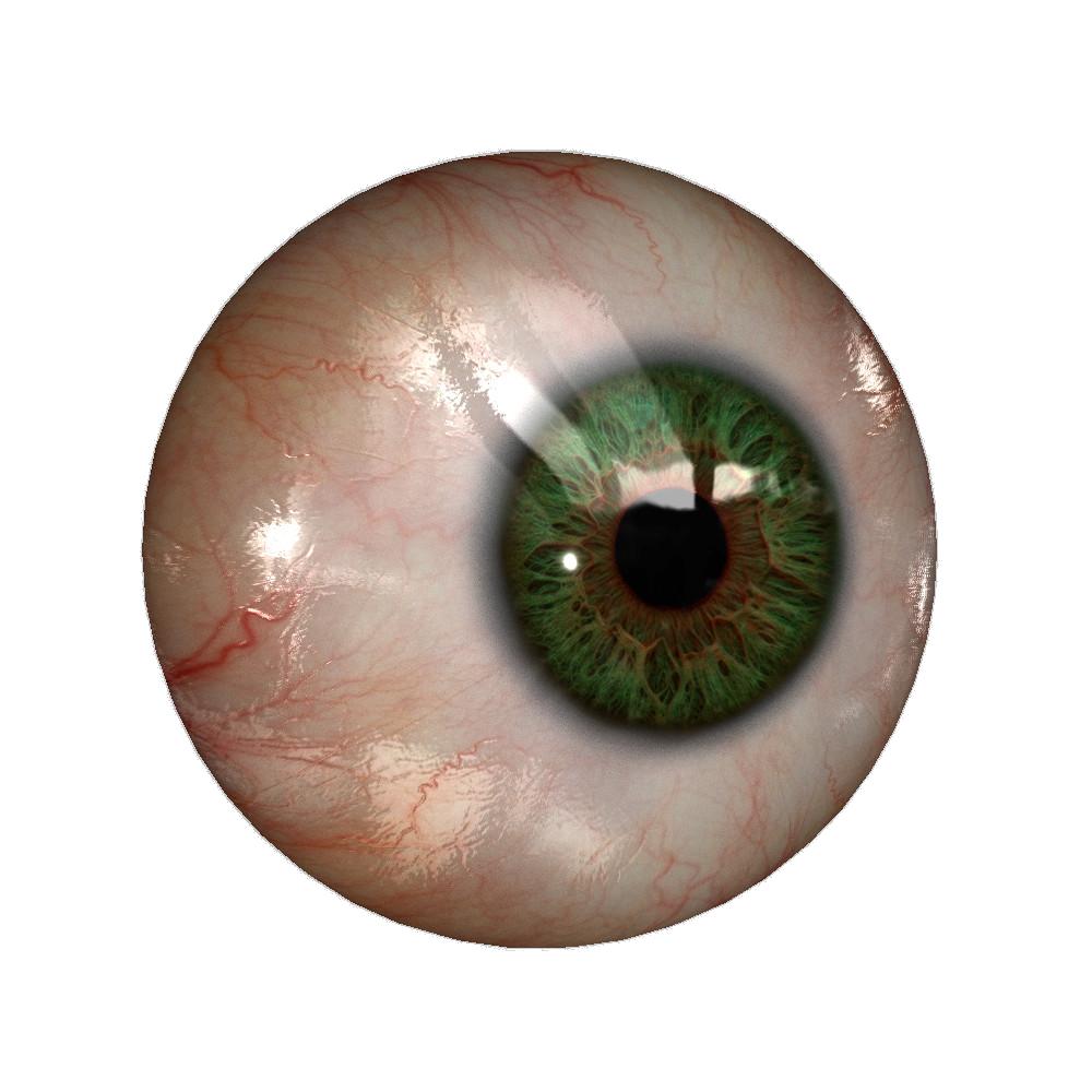 Real Eye Png File Eyeball Drawing Human Eye Scary Eyes