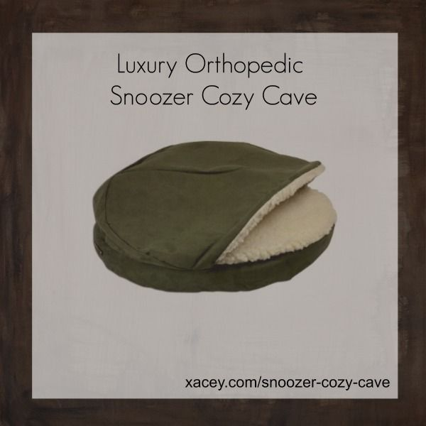 snoozer cozy cave dog bed reviews snoozercozycave Cave