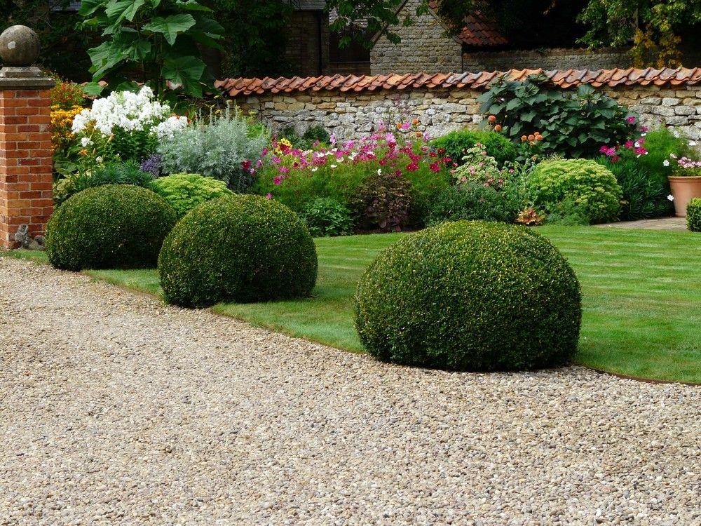 Box Balls Google Search Garden Design Garden Garden