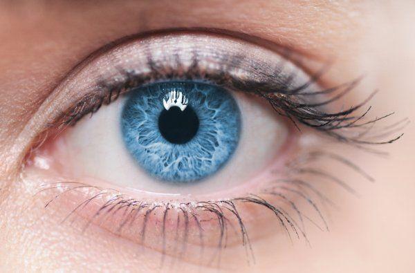 Ученые: Цвет глаз расскажет о возможных заболеваниях ...