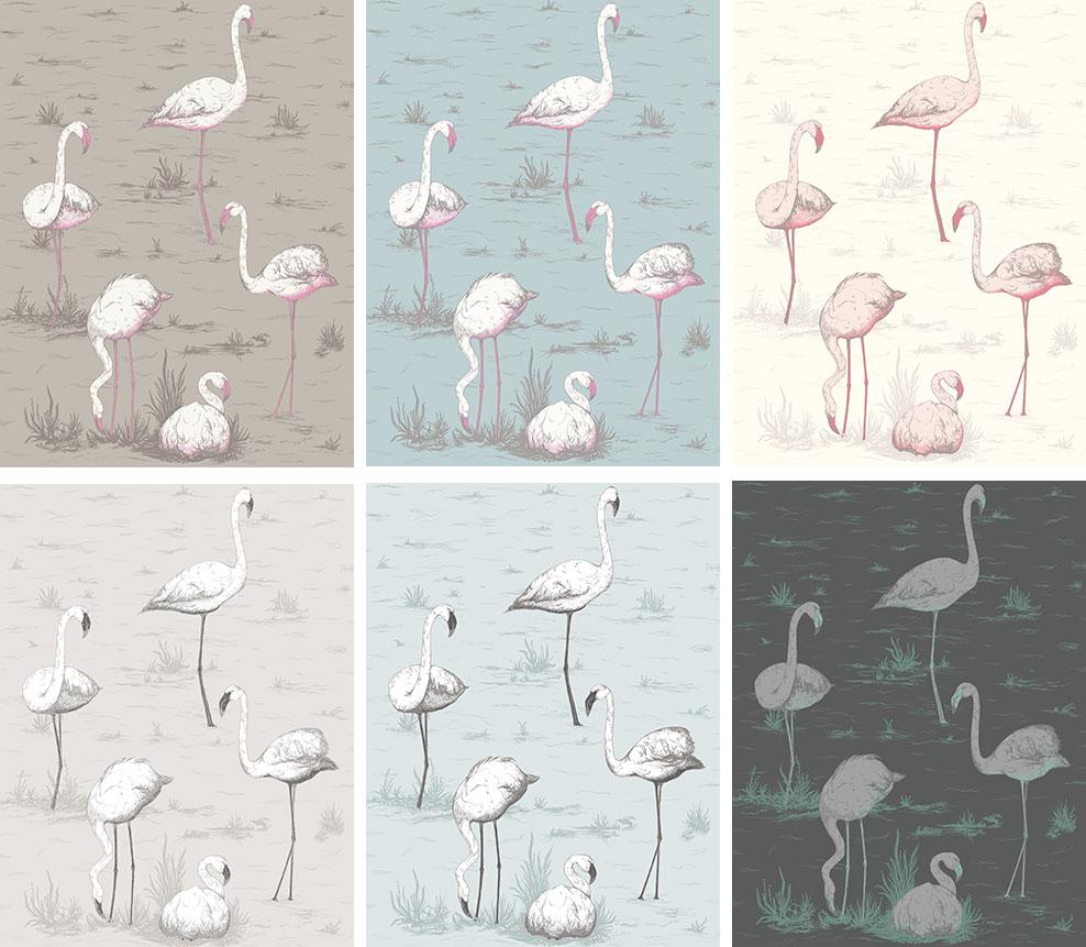 Papier Peint Flamants Roses Flamingos De Cole And Son Disponible