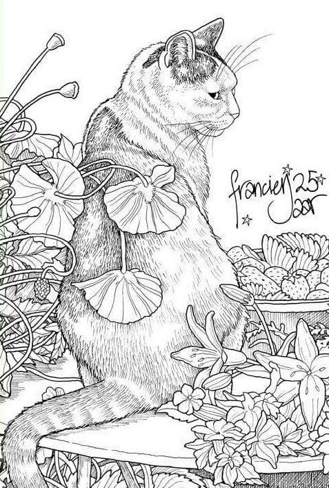 grown up coloring pages cats - photo#42