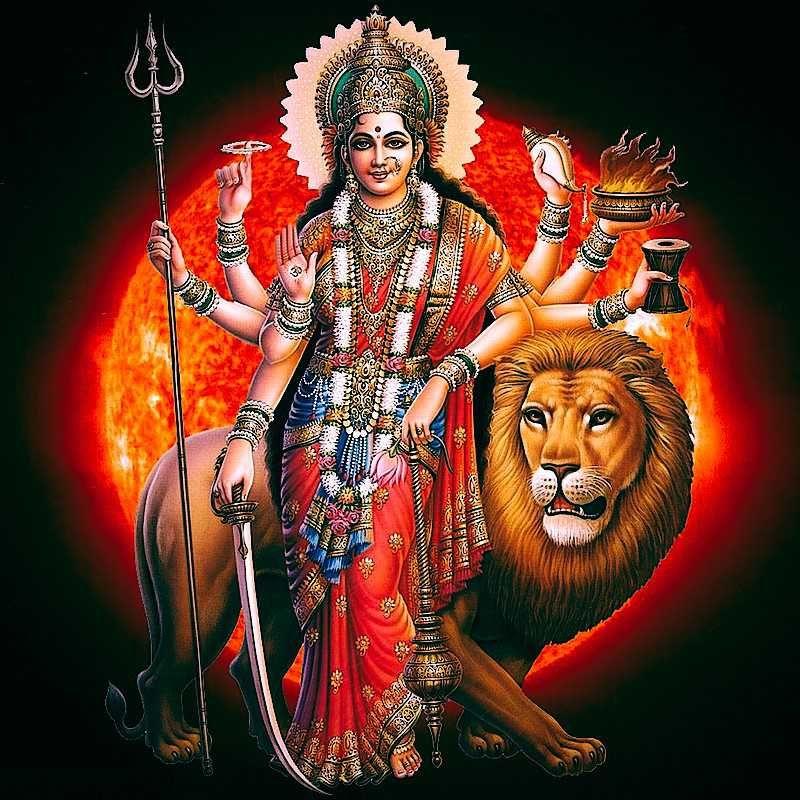 Maa Durga Face Wallpaper Full Size Hd Durga Durga Maa Navratri Images