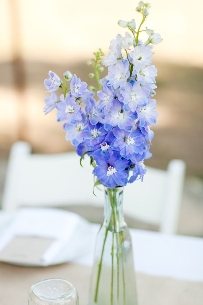 Blue delphinium used in the centerpieces touches of