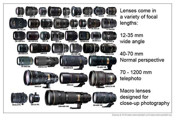 Professional Lens Google Pretrazivanje Photography Lenses Professional Photography Photography 101