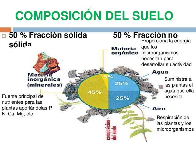 Informaciones agronomicas el suelo componentes for Componentes quimicos del suelo