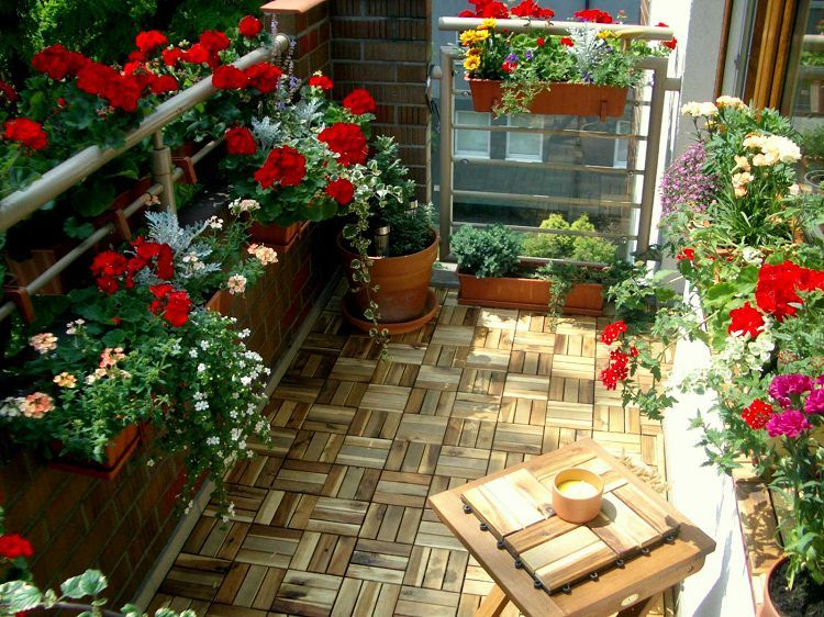 Photo of All you need for a beautiful and productive Garden-Seeds, Tools, Gifts