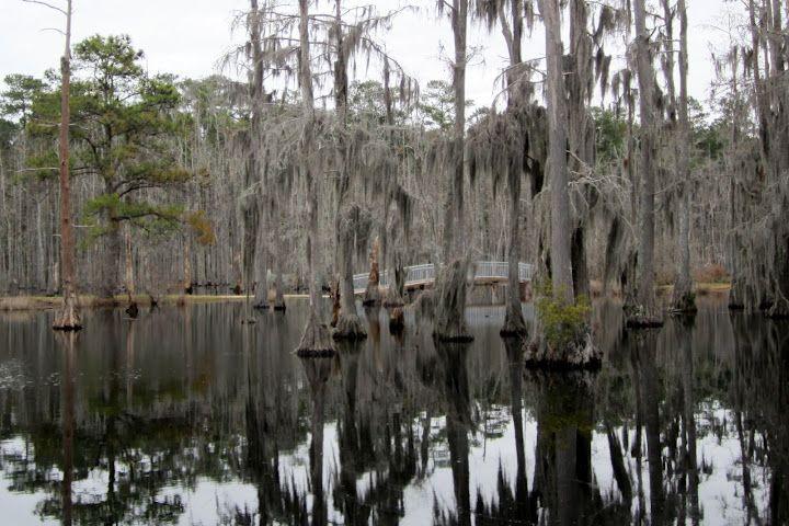 Sam Houston State Park near Lake Charles Louisiana ...