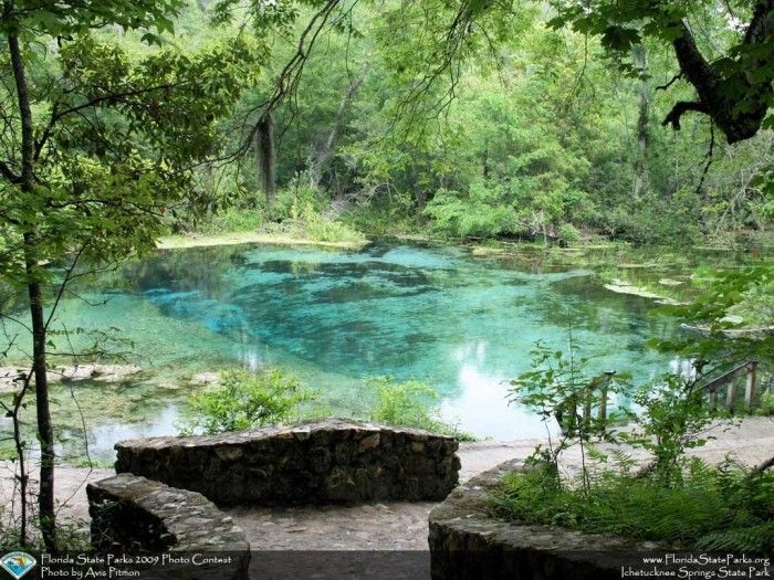 Ichetucknee Springs State Park, 12087 Southwest U.S. 27, Fort White, FL 32038 North Florida road trip