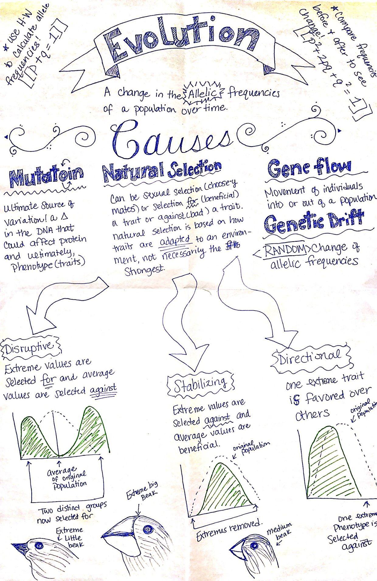 nature of biology 1 vce pdf