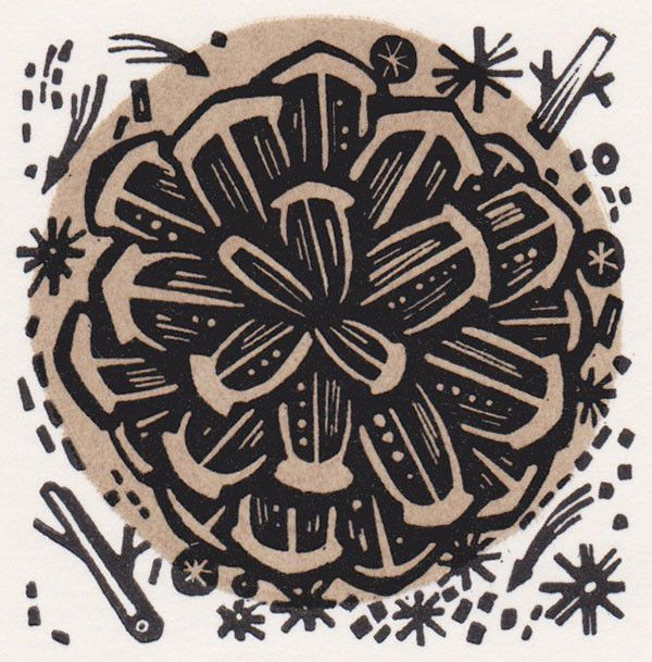 Cone - wood engraving by Angie Lewin - printmaker