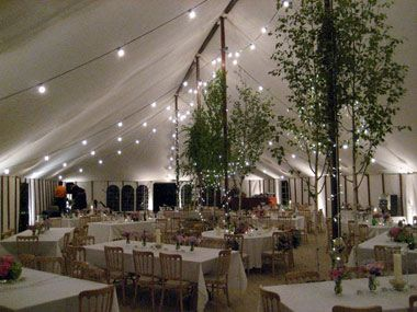 Wedding marquee in hertford hertfordshire marquee for Indoor marquee decoration