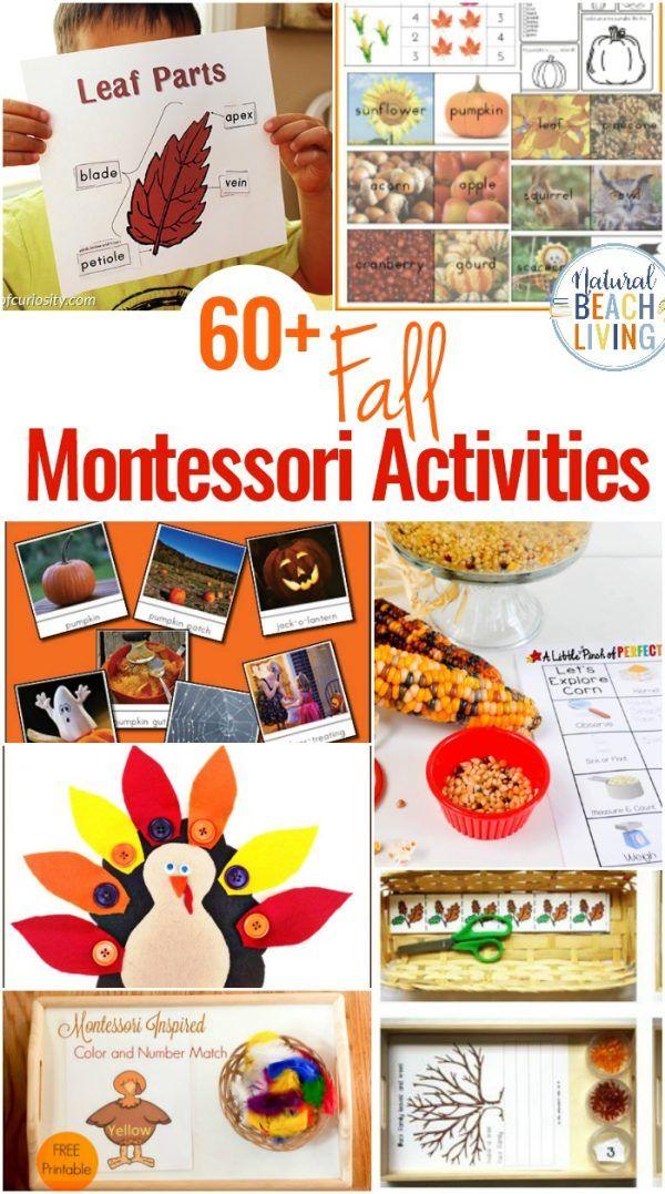60+ Montessori Activities for Fall - Montessori Fall Themes Free Printable - Natural Beach Living