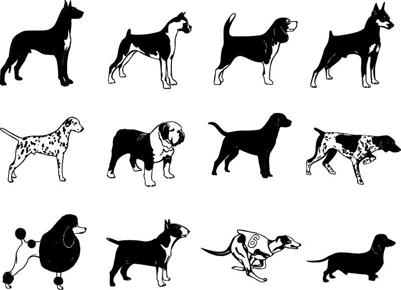 Dog Breed Silhouette Vector Clip Arts Free Download - SVG Files