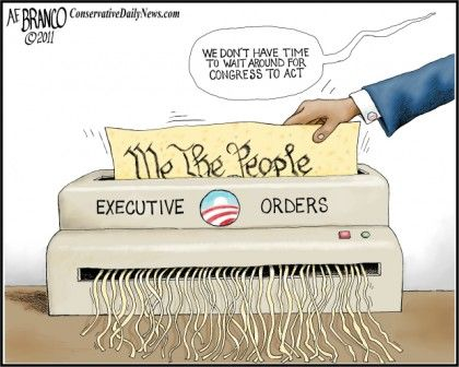 Image result for Executive Orders Cartoon