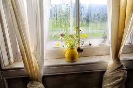 Image result for still life by window