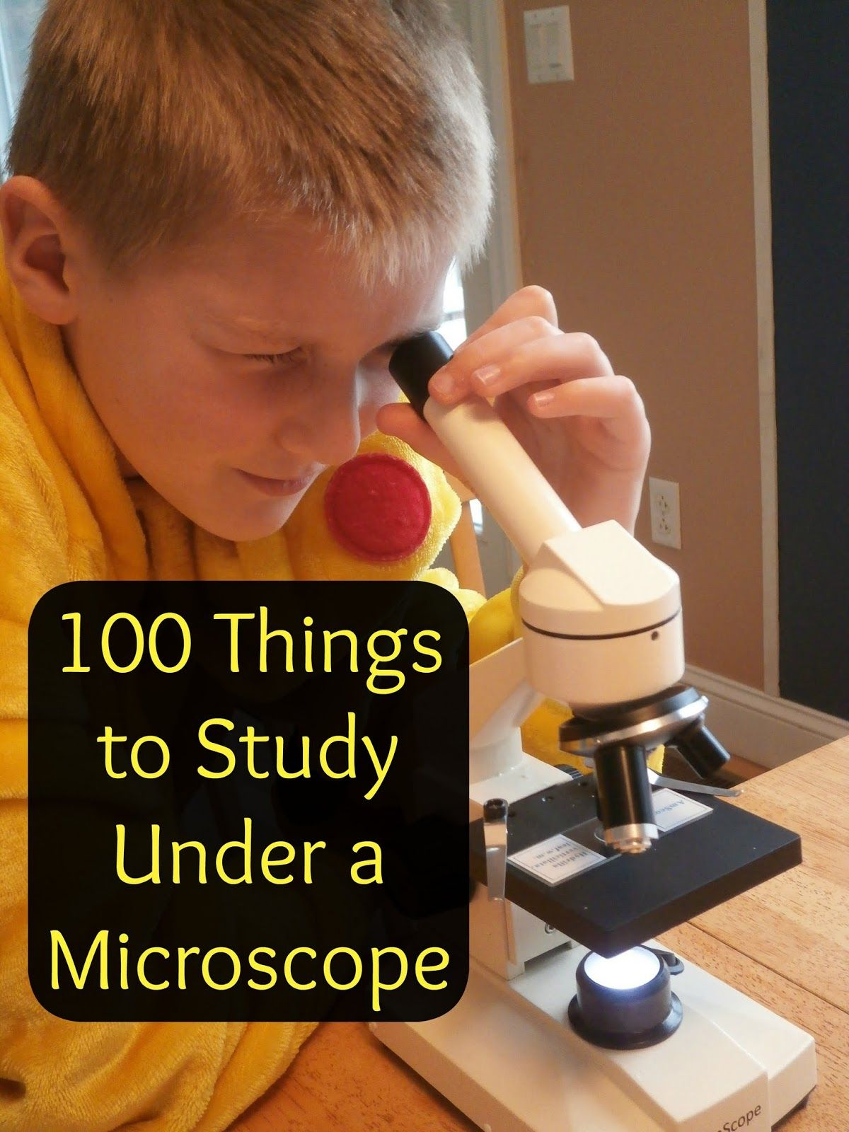 100 Things To Look At Under A Microscope
