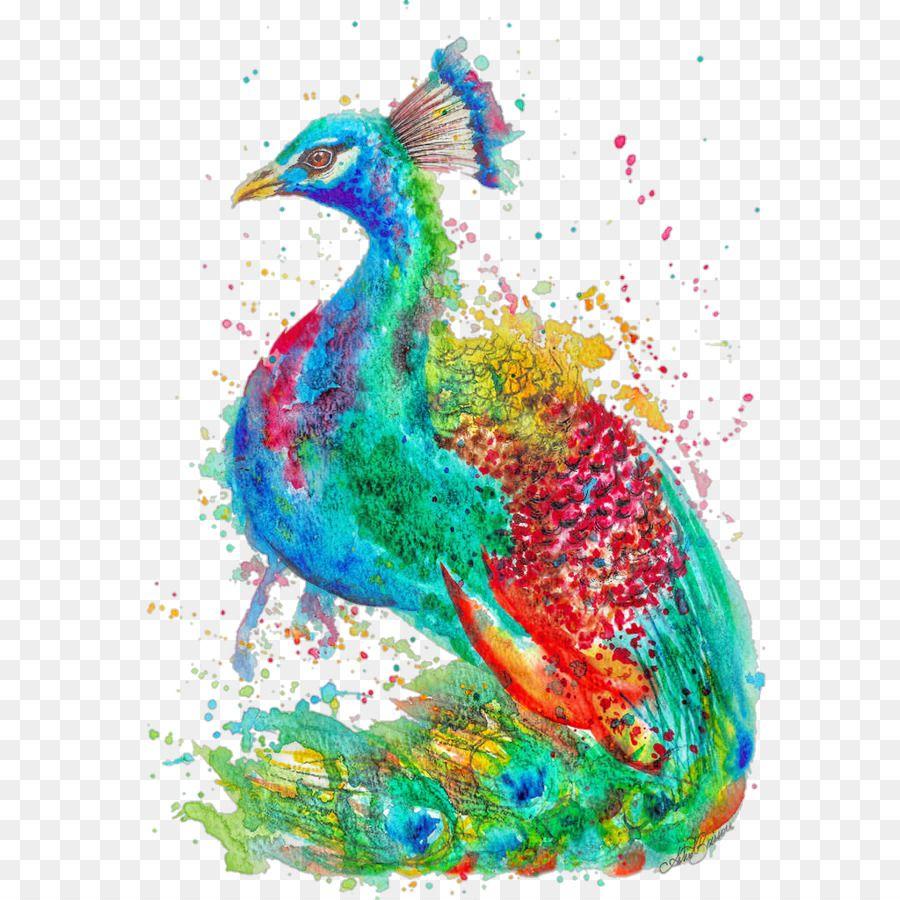 Gambar Kolase Burung Merak Burung Kolase Gambar
