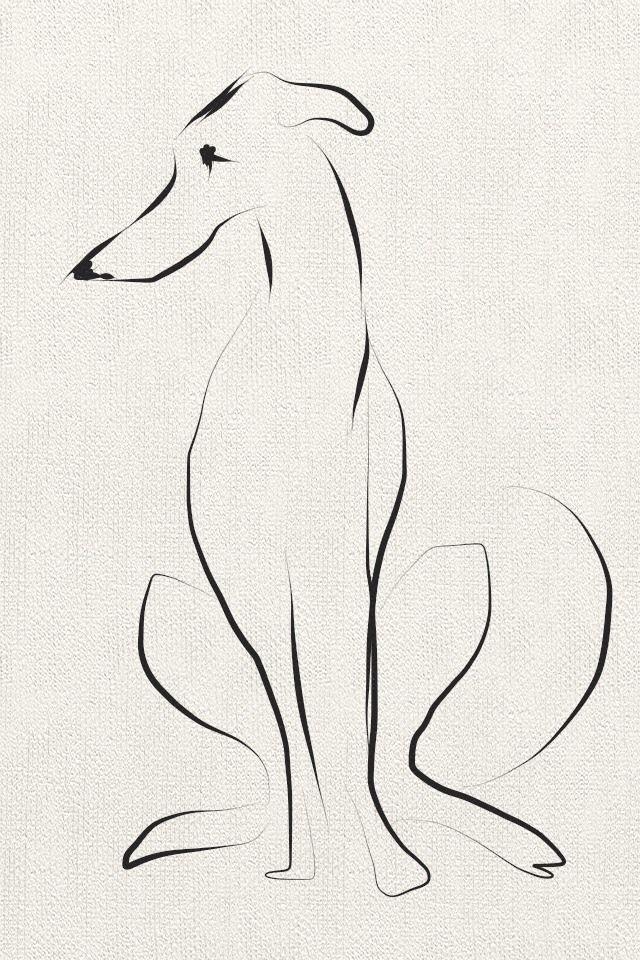 The Dog Arte De Galgos Tatuaje De Galgos Dibujos De Perros