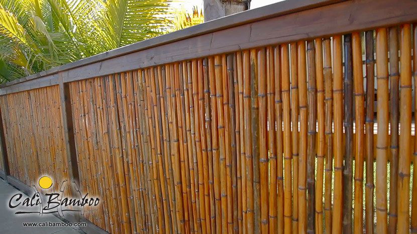 3 5ft X 8ft Carbonized 1 Inch Diameter Cali Bamboo Bamboo Fence Backyard Fences Fence Design