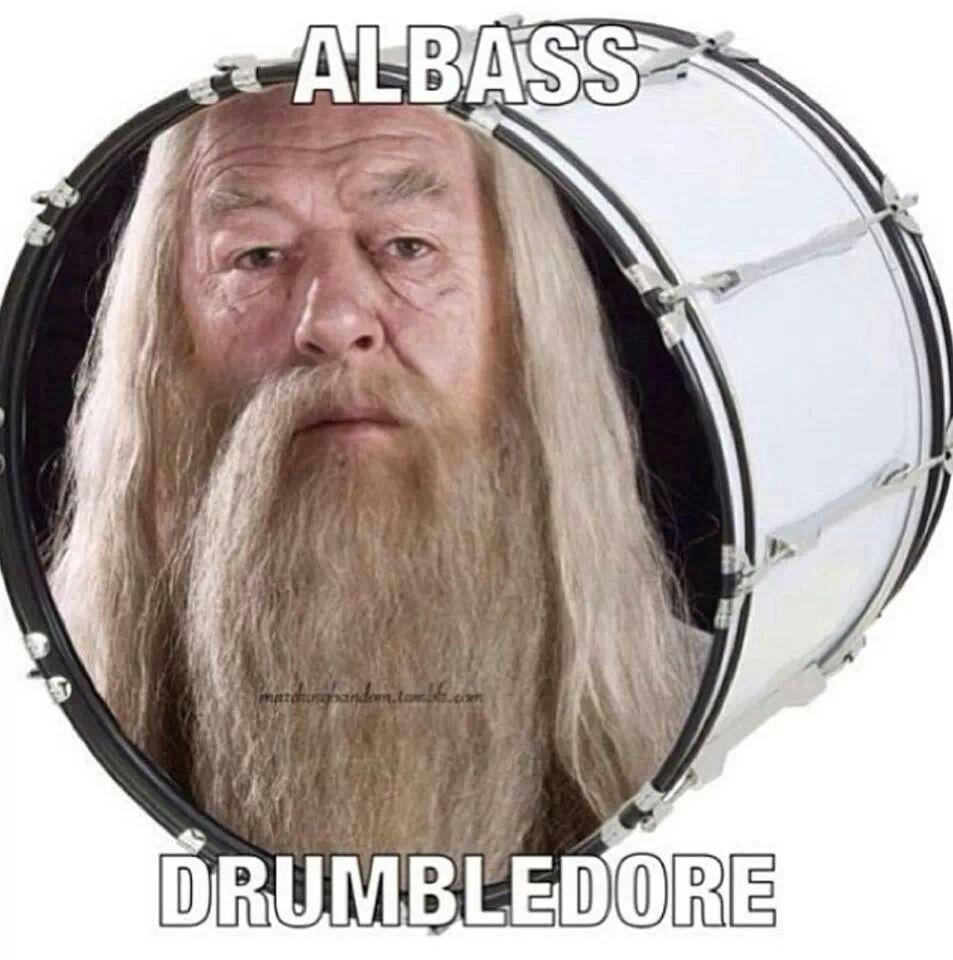 Albus Dambldor Band Puns Band Jokes Band Humor