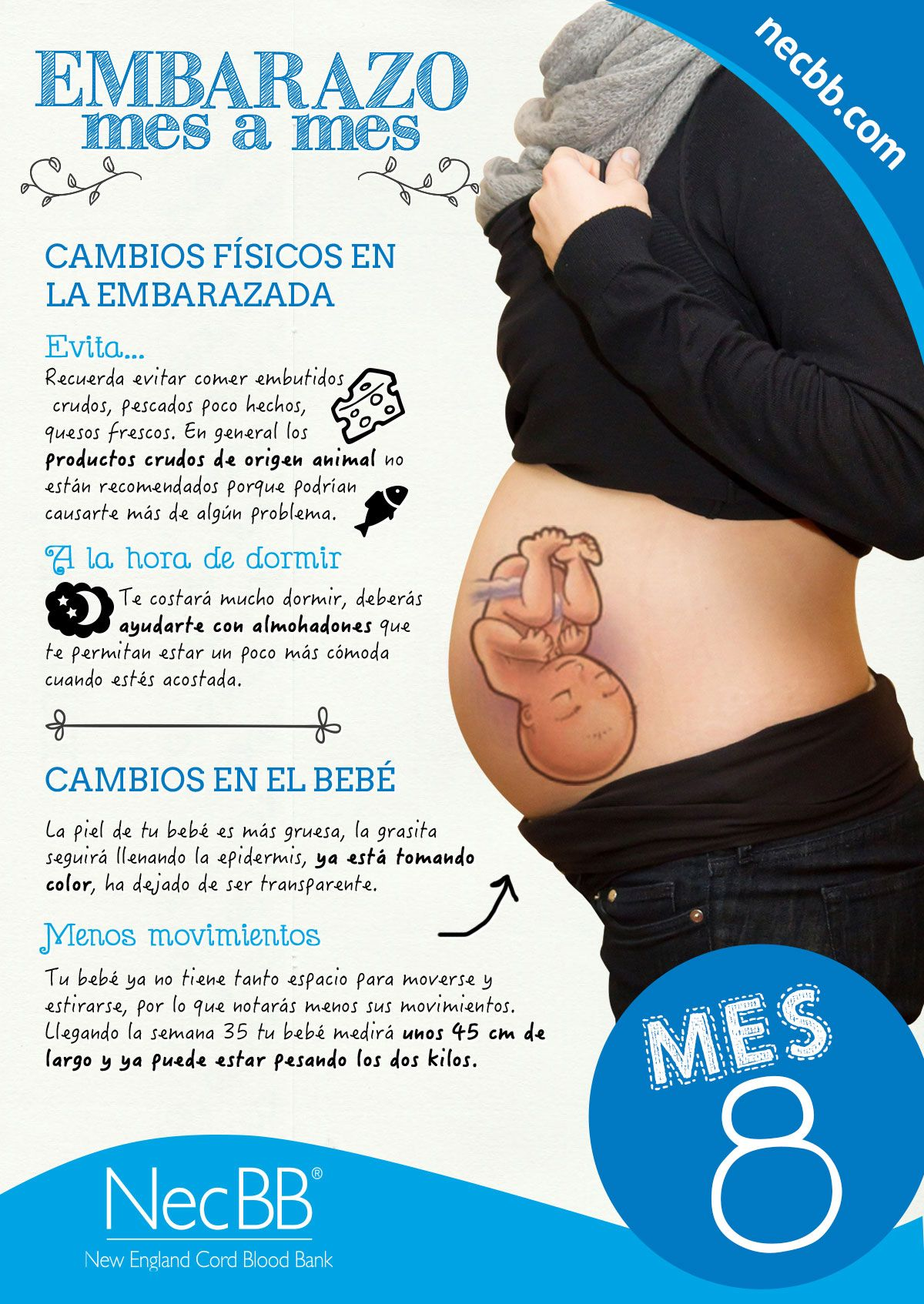 Pin By Tip Salud On Embarazo Mes A Mes Fotos Y Frases Pregnancy