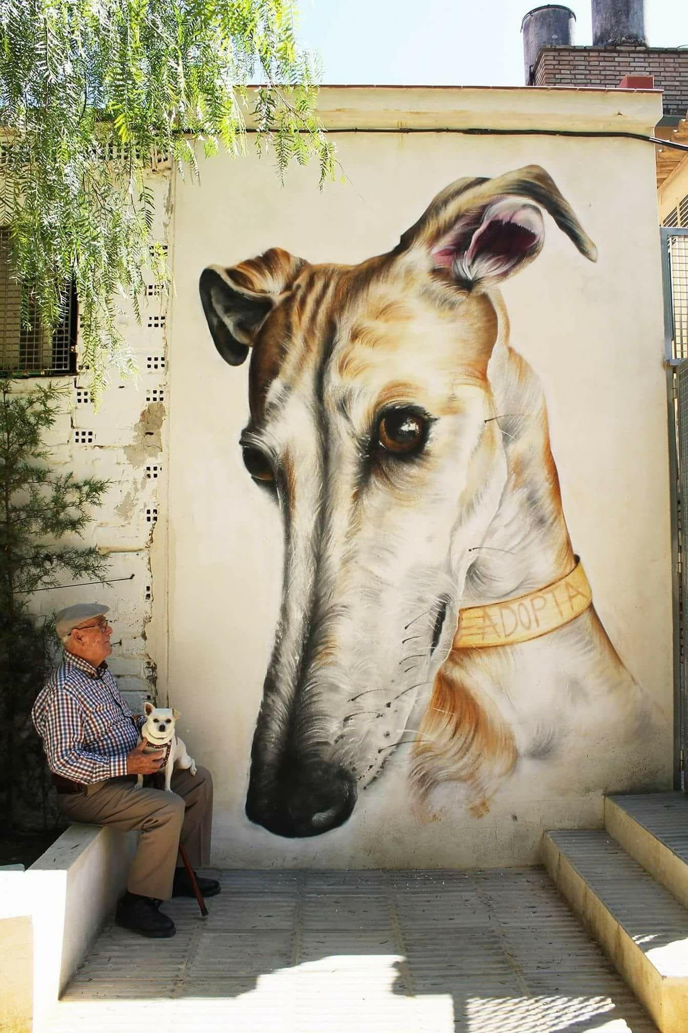 Quelle Magnifique Fresque Quel Talent Adopta Peinture Murale Dans Le Parc Municipal Bae Art Du Levrier Dessin De Chien Peintures De Chien