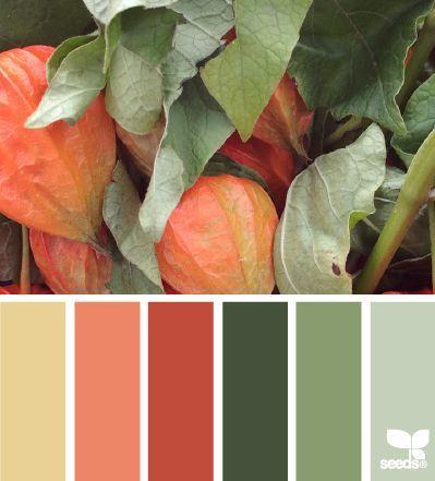 #Farbberatung #Stilberatung #Farbenreich mit www.farben-reich.com Schöne Kombi auch für unser Outfit - Orange und Grüntöne in allen Facetten #autumncolours